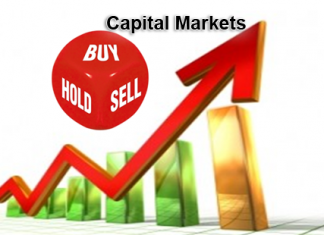 Capital Market Functions Role