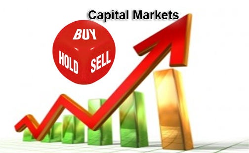 role of capital market in the As a capital market analyst you can expect to be involved in multiple tasks around the deal offering these tasks might include pricing the deal,.