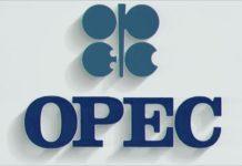 OPEC logo