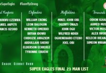 Super Eagles final list